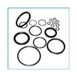 Oil Seals And Gaskets